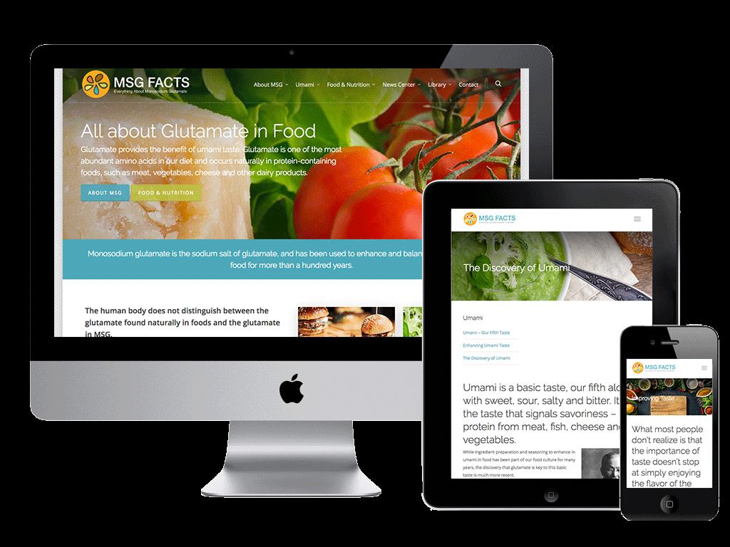 Dawsonville Web Design & SEO Company Designer